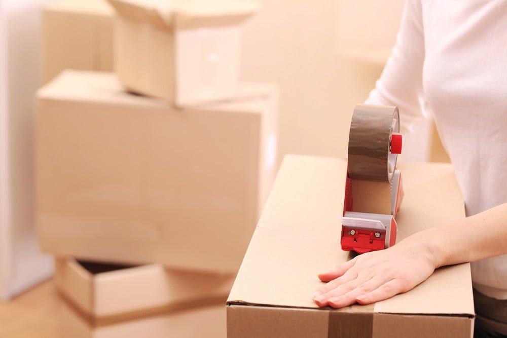 AMAZONEBORG - Wagenborg Shipping multipurpose dry cargo ...  |Shipment Delivery